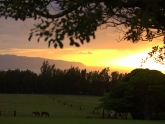 sunset-view-from-sunset-vista