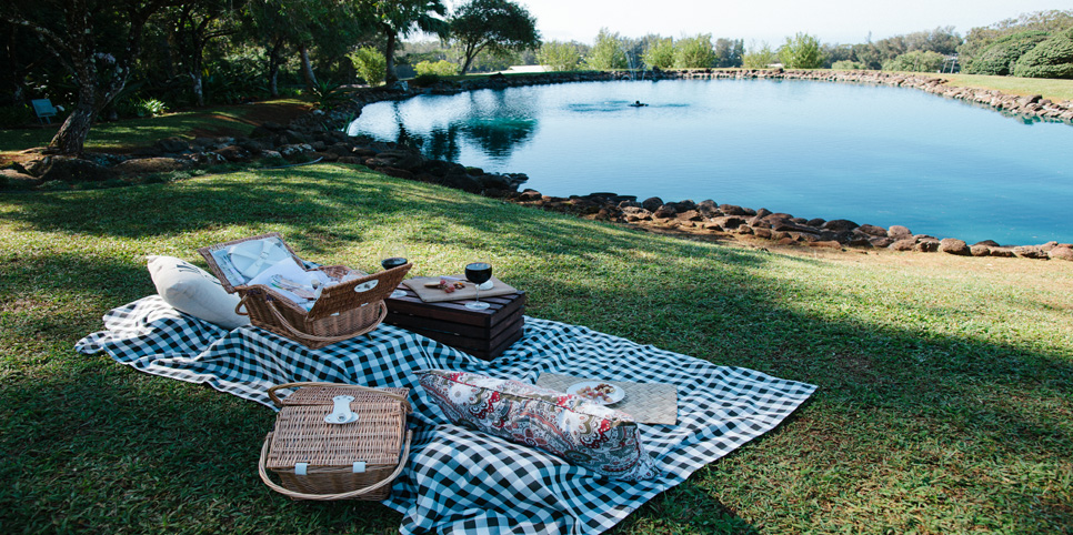 The Perfect Picnic_1_website