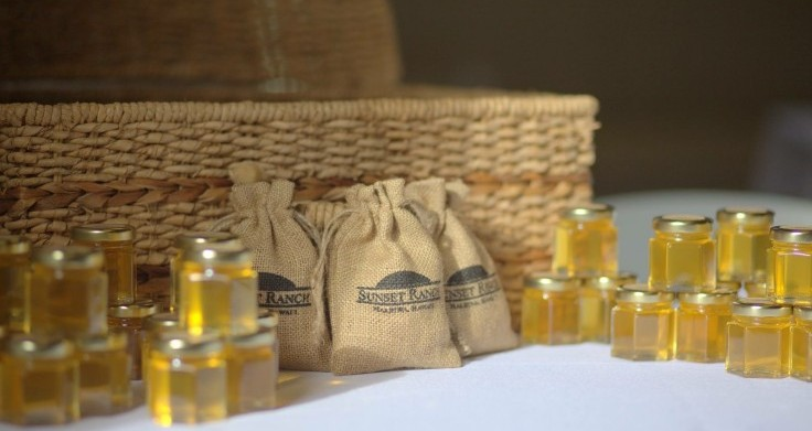 honey-and-coffee-favors